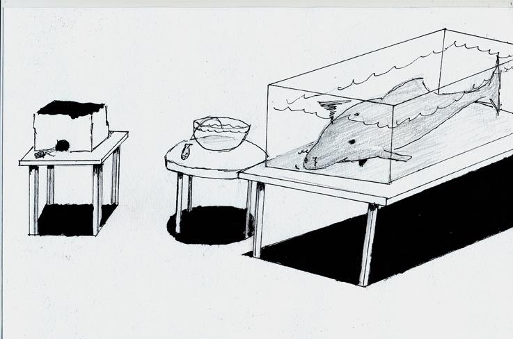 Ari Karhunen Delfiini